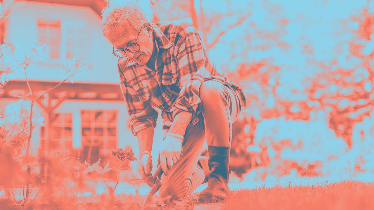 Older man gardening
